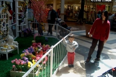 2003 04-19-03 Shopping in Nashua 05